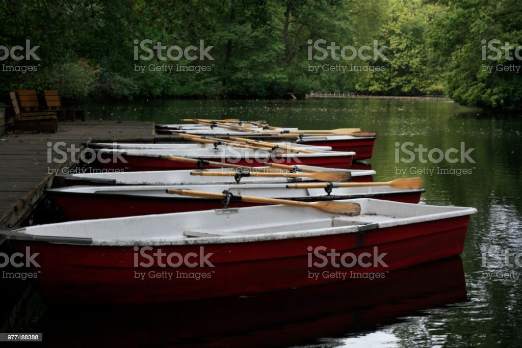 Rows of red, timber hire row boats for rent on a lake in the park in...