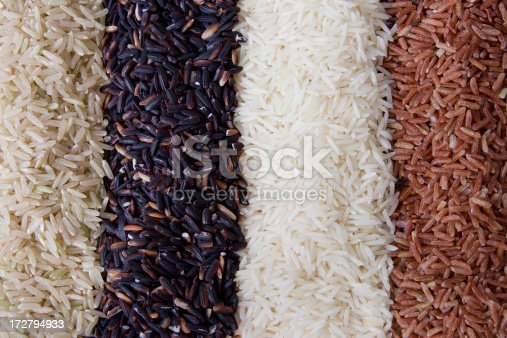 istock Rows of rice 172794933