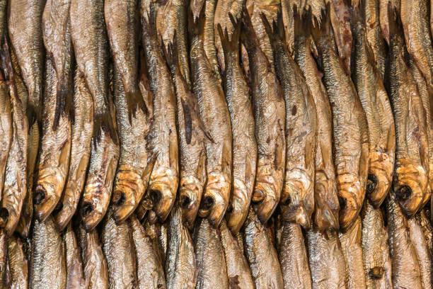 Reihen von geräucherten Hering – Foto