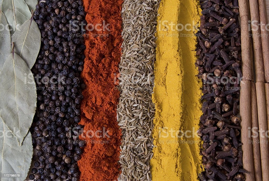Rows of spices 1 royalty-free stock photo