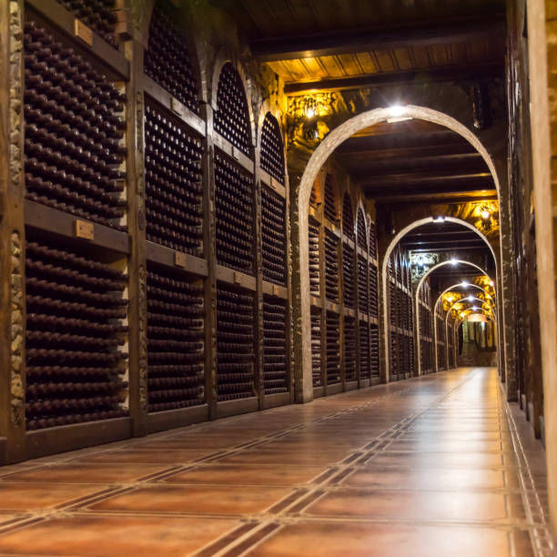 rows of vintage wine bottles in a wine cellar - moldova stock pictures, royalty-free photos & images