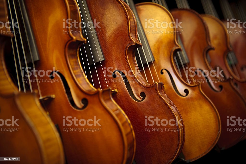 Rows of violins stock photo
