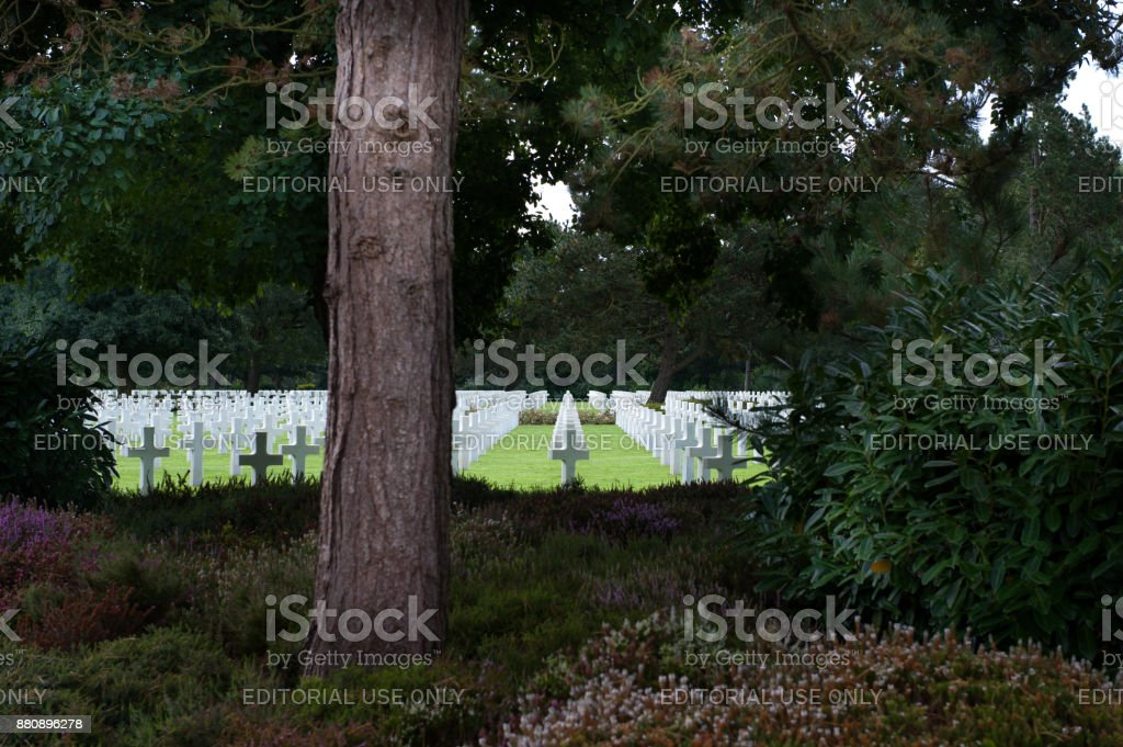 Rows of white crosses at the Normandy American Cemetery stock photo
