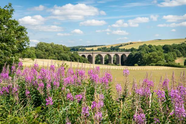 Roxburgh Viaduct (Disused) stock photo