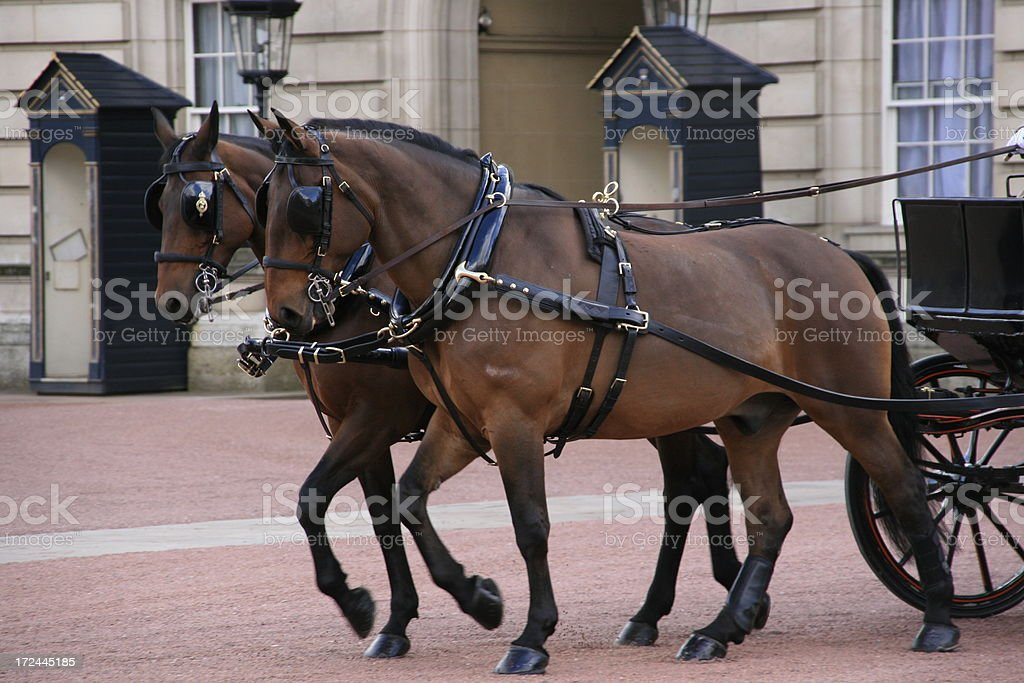 Royal Carriage and horses leaving Buckingham Palace stock photo