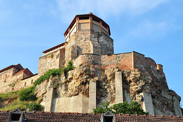 royal castle in Estzergom,Hungary stock photo
