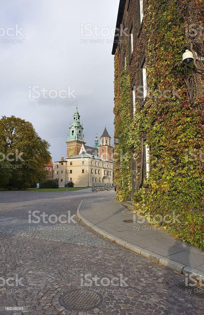 ロイヤル城の Kraków,ポーランド - クラクフのロイヤリティフリーストックフォト