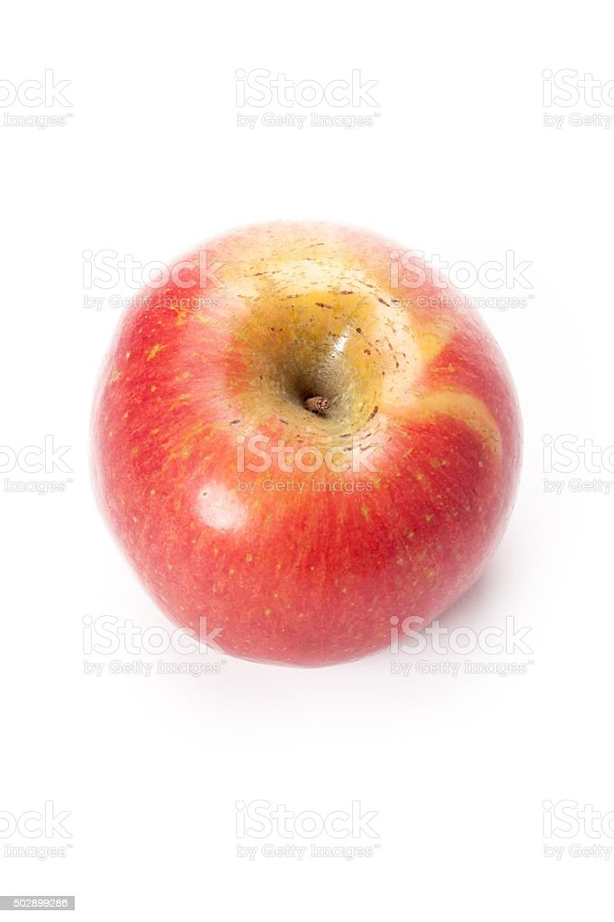 royal gala apple top view stock photo