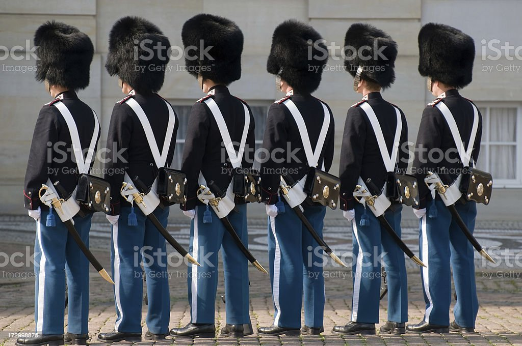 Royal guards. royalty-free stock photo