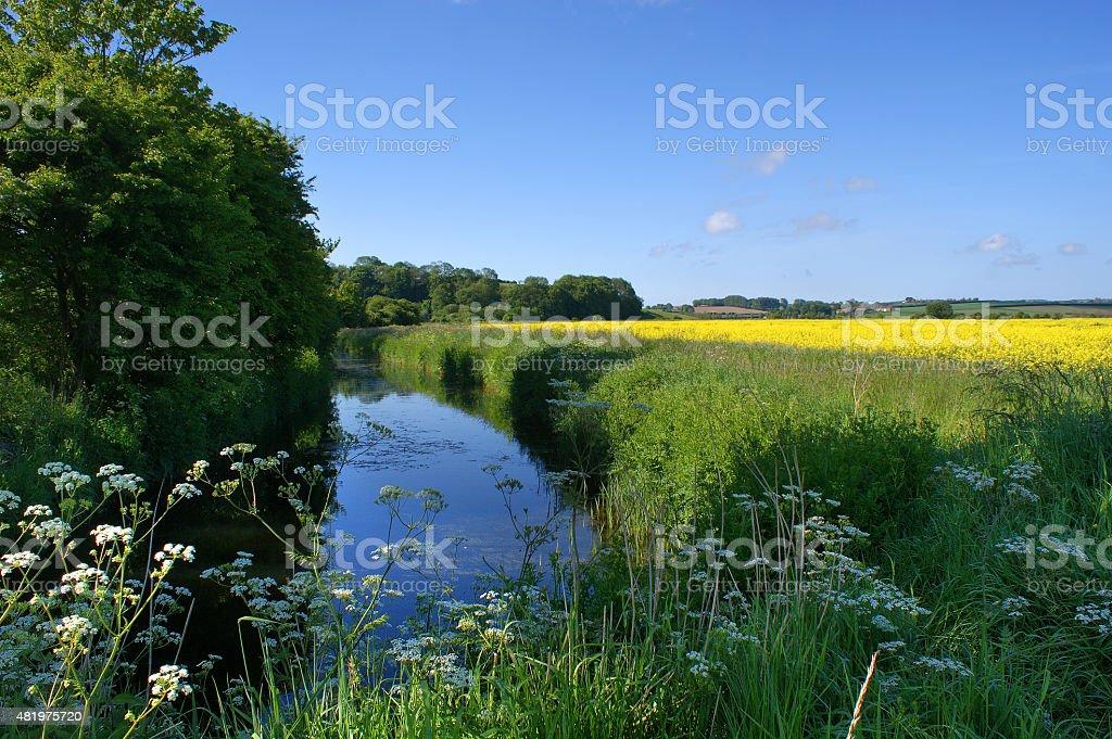 Royal Military Canal near Winchelsea stock photo