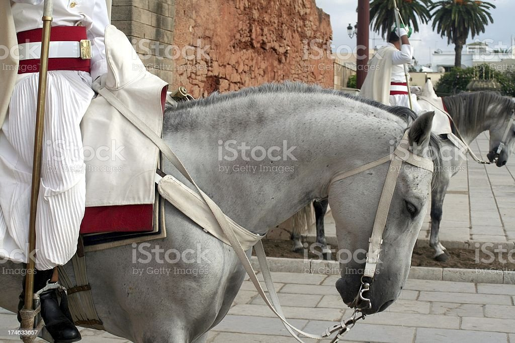 Royal Moroccan Cavalry stock photo