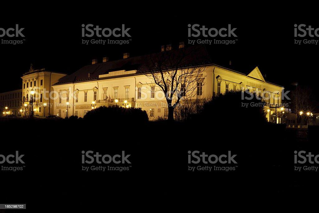 Royal Palace of Buda, Budapest, royalty-free stock photo