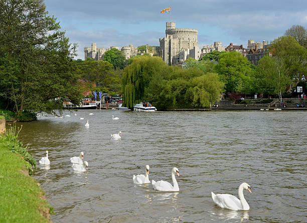 Royal Windsor – Foto