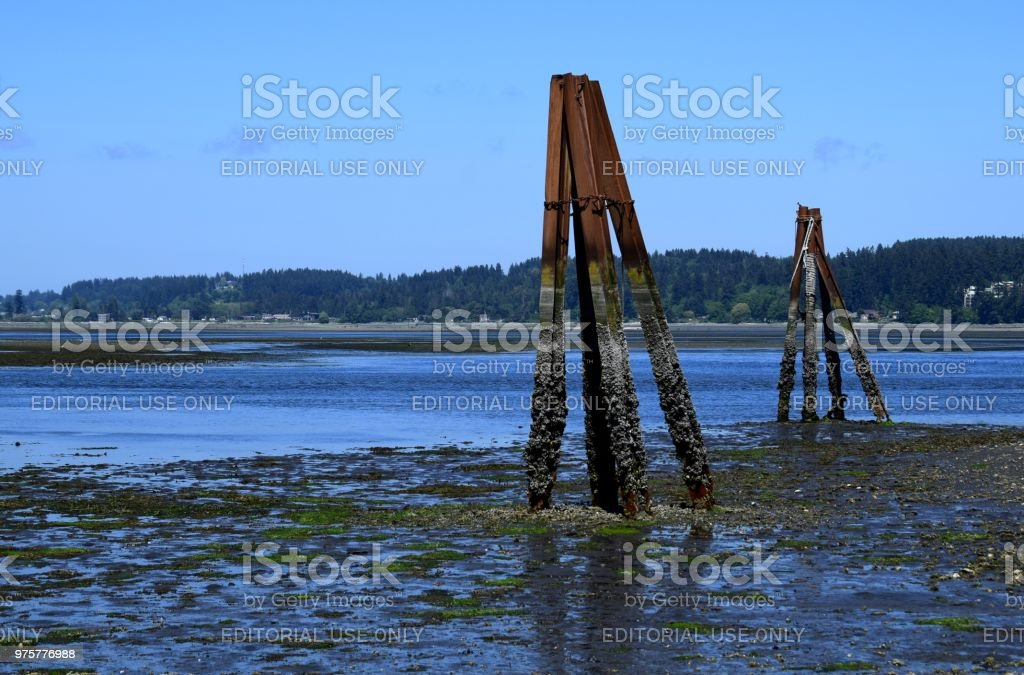 Royston Schiffbruch Website, Vancouver Island - Lizenzfrei Alt Stock-Foto
