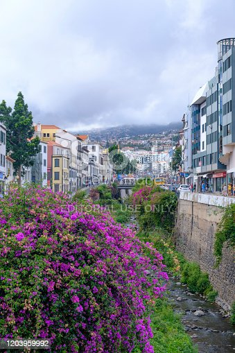 Rua de Janeiro next to the Ribeira de Santa Luzia in Funchal on Madeira island during summer day. Rua 31 de Janeiro is one of the leading and most extensive streets of Funchal. People are walking on the sidewalk.