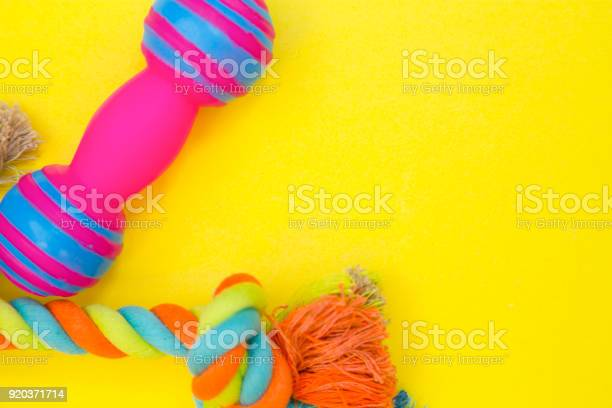Rubber and textile pet toys picture id920371714?b=1&k=6&m=920371714&s=612x612&h=27yljpdkq8gjj9ygezt4acpzoajsqc5ukbyiiahjju0=