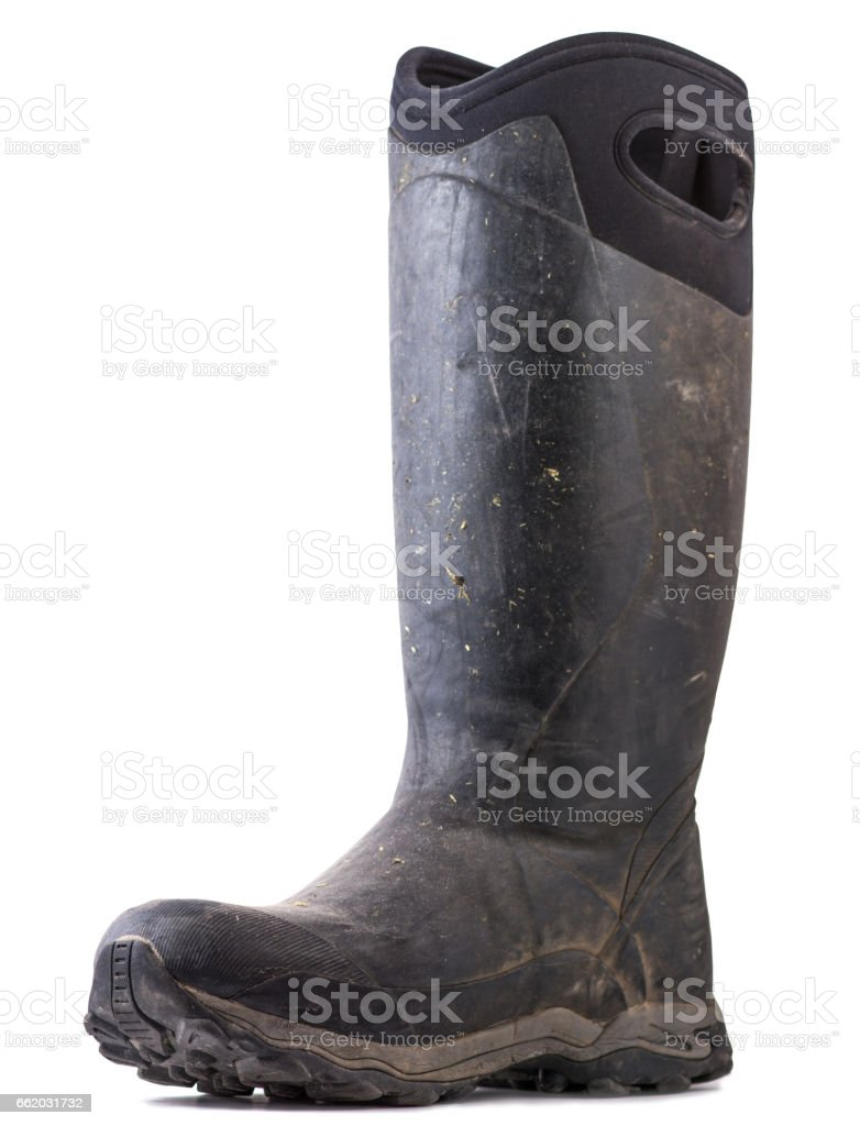 Rubber Boot Isolated on White Background royalty-free stock photo