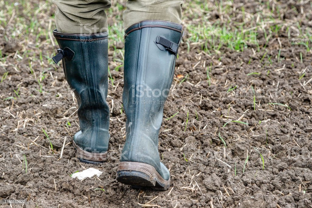 Rubber boots for use in agriculture. - Royalty-free Adult Stock Photo