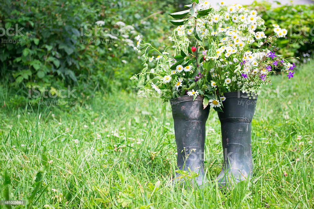 Rubber boots in a meadow stock photo