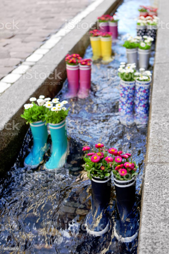 Rubber boots in the water with flowers in the city of Freiburg. Tourist attraction. stock photo