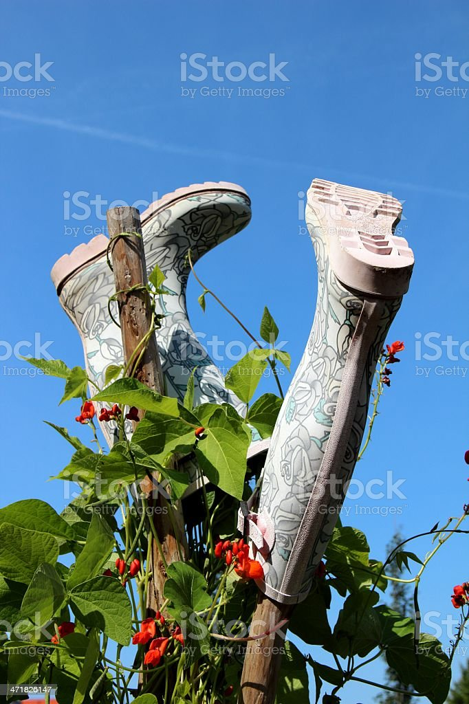 Rubber boots waiting for their use royalty-free stock photo