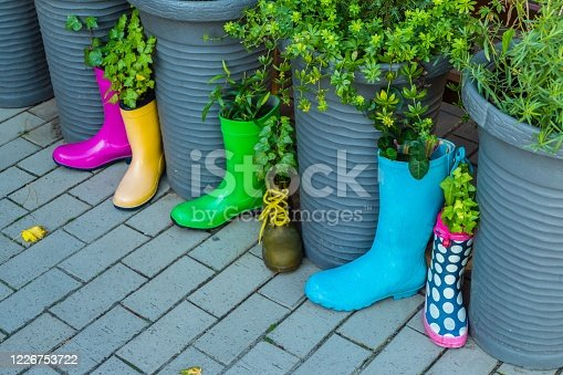 istock Rubber Boots with Plants in it 1226753722