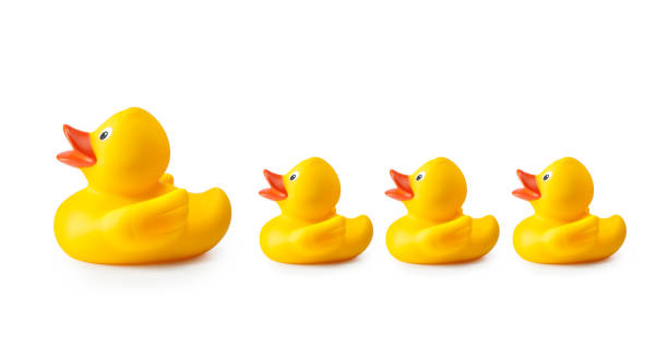 rubber duck and ducklings - in a row stock pictures, royalty-free photos & images