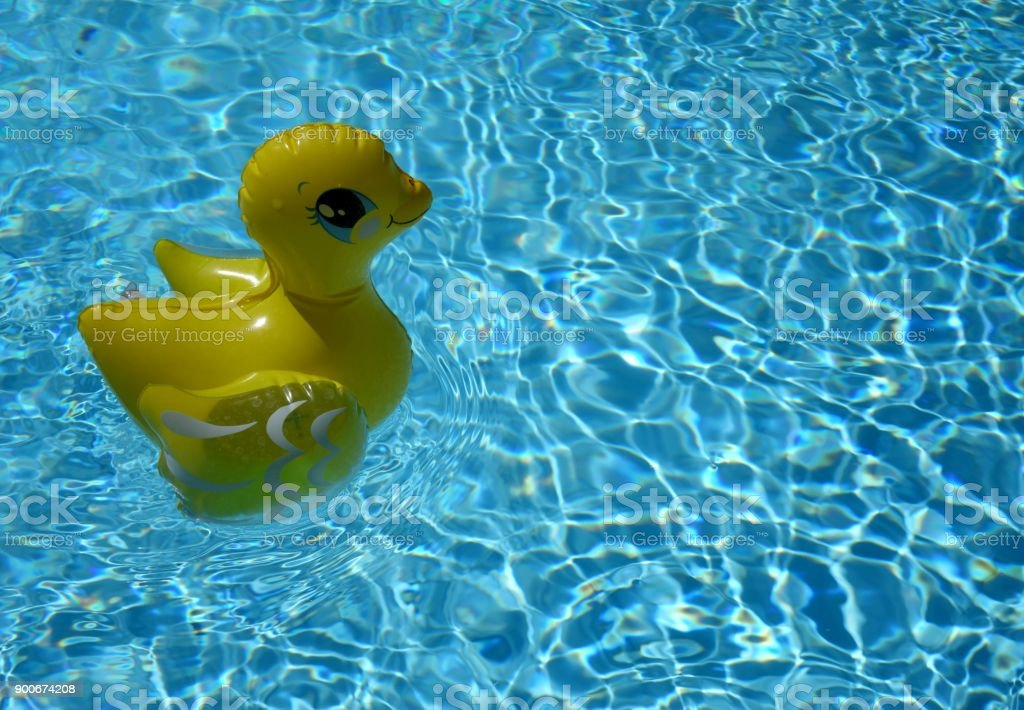 Rubber Duck Floating In The Water In A Swimming Pool Stock ...