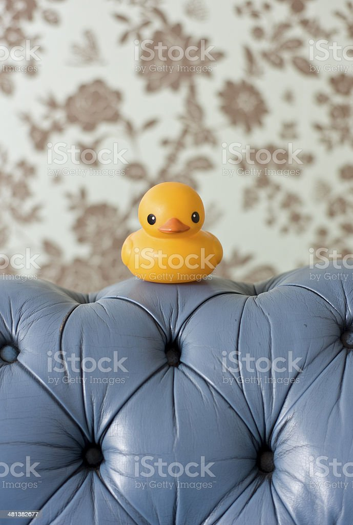 Rubber Duck on Sofa stock photo