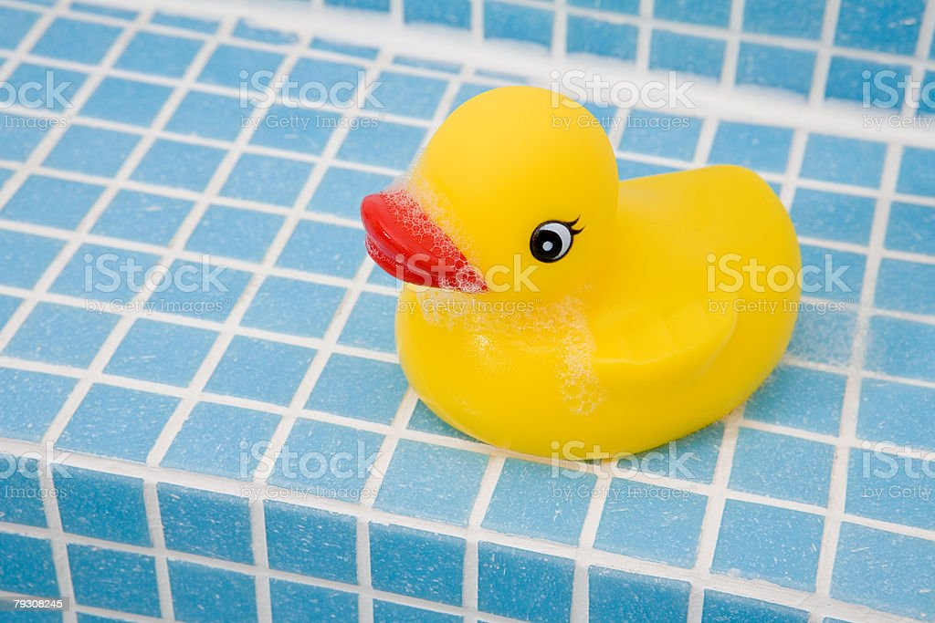 Rubber duck royalty-free stock photo