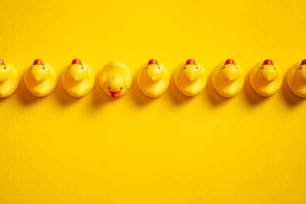 Rubber ducks in a row on yellow - Background Individuality Ideas stock photo