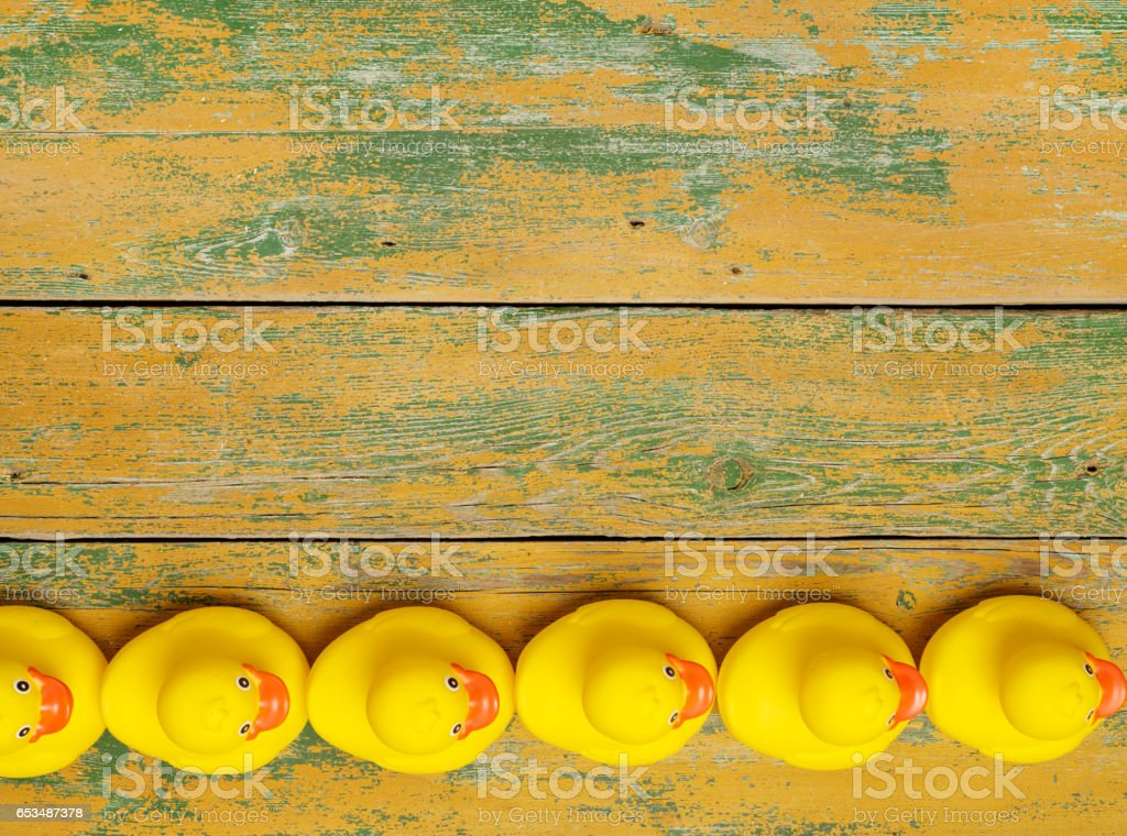 Rubber ducks in a row - foto stock