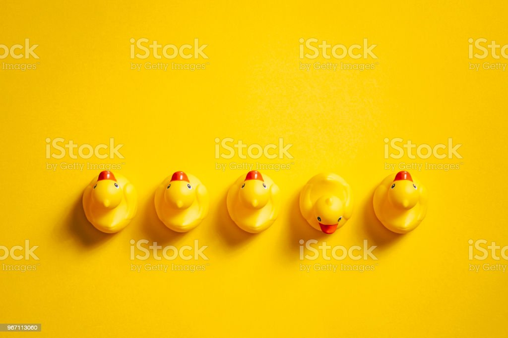 Rubber ducks on yellow - Background Individuality Ideas stock photo