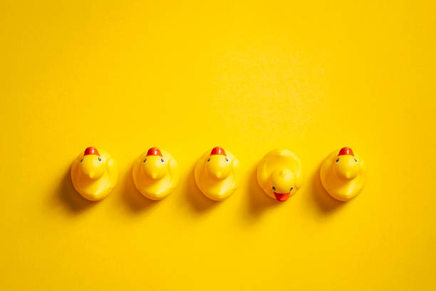 Rubber ducks on yellow - Background Individuality Ideas Directly above photography of rubber ducks on a yellow background. medium group of objects stock pictures, royalty-free photos & images