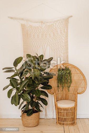 istock Rubber Fig Plant Wicker Armchair Interior Decor 1159999301