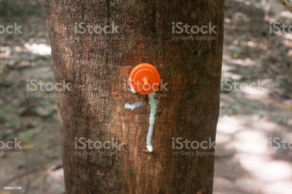 Rubber injection technology. stock photo