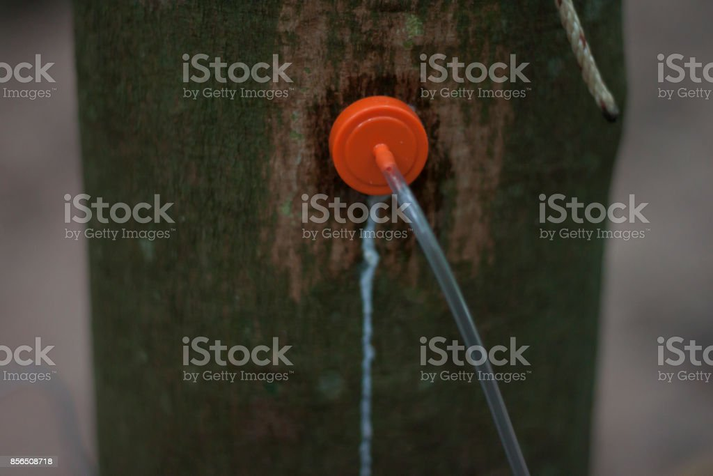Rubber injection technology stock photo