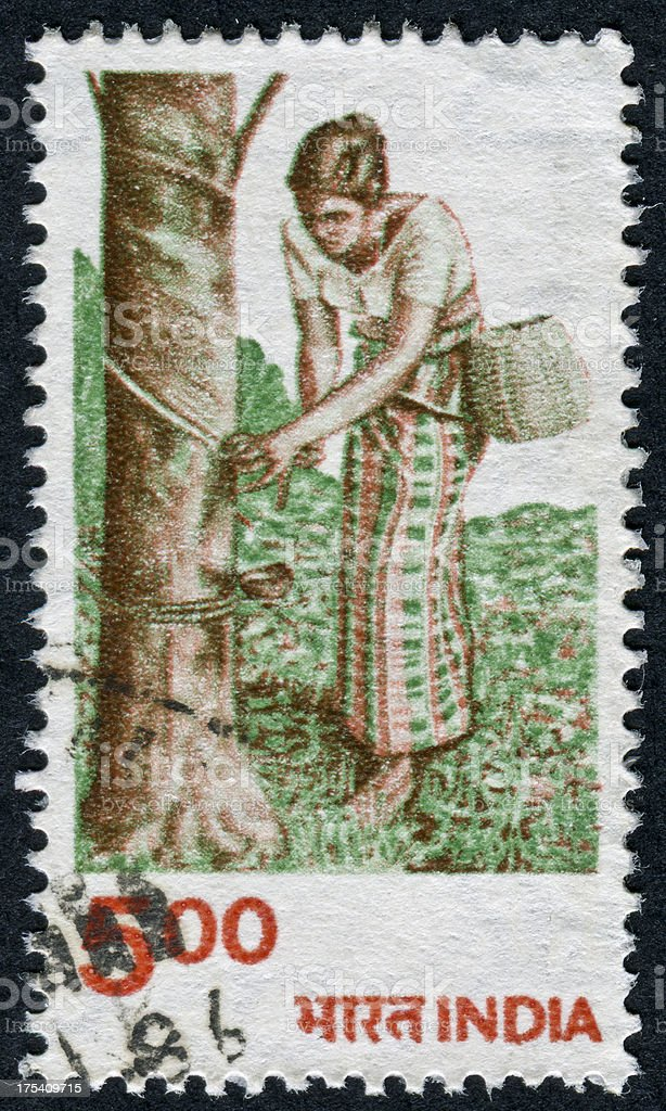 Rubber Tree Stamp royalty-free stock photo