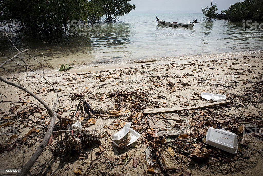 Rubbish in the Beach. royalty-free stock photo
