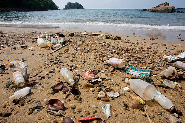 Müll in den Strand. – Foto