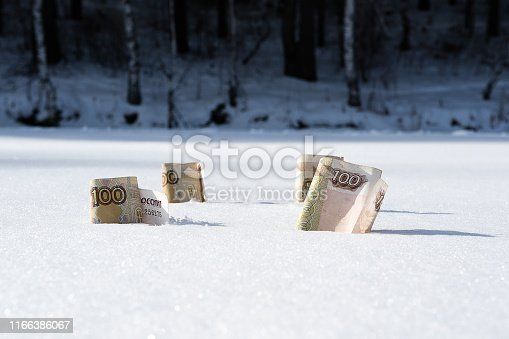 rubles froze in the snow, denominations of 100 rubles in the snow in winter