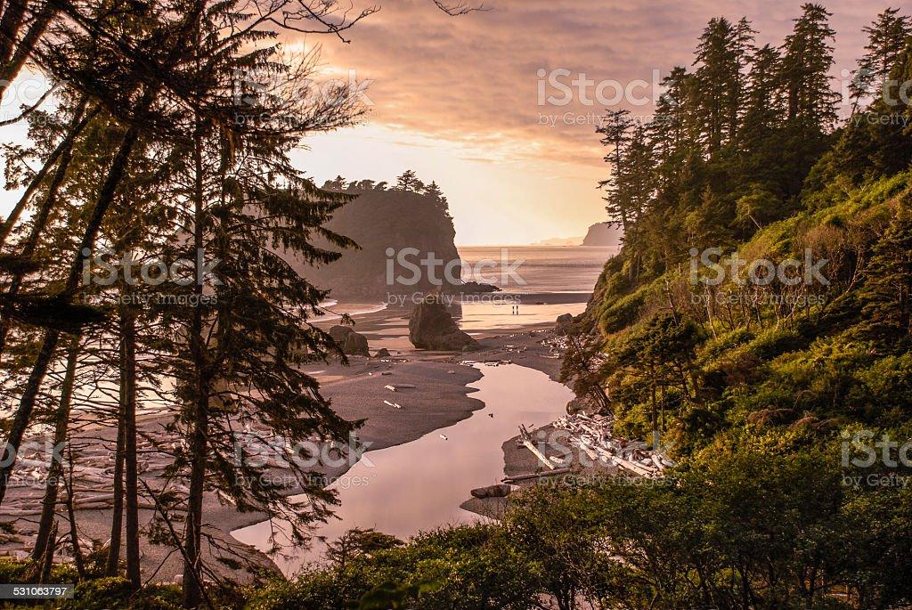 Ruby Beach Landscape stock photo