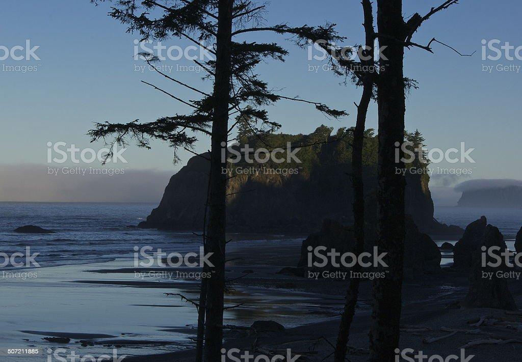 Ruby Beach Shady stock photo