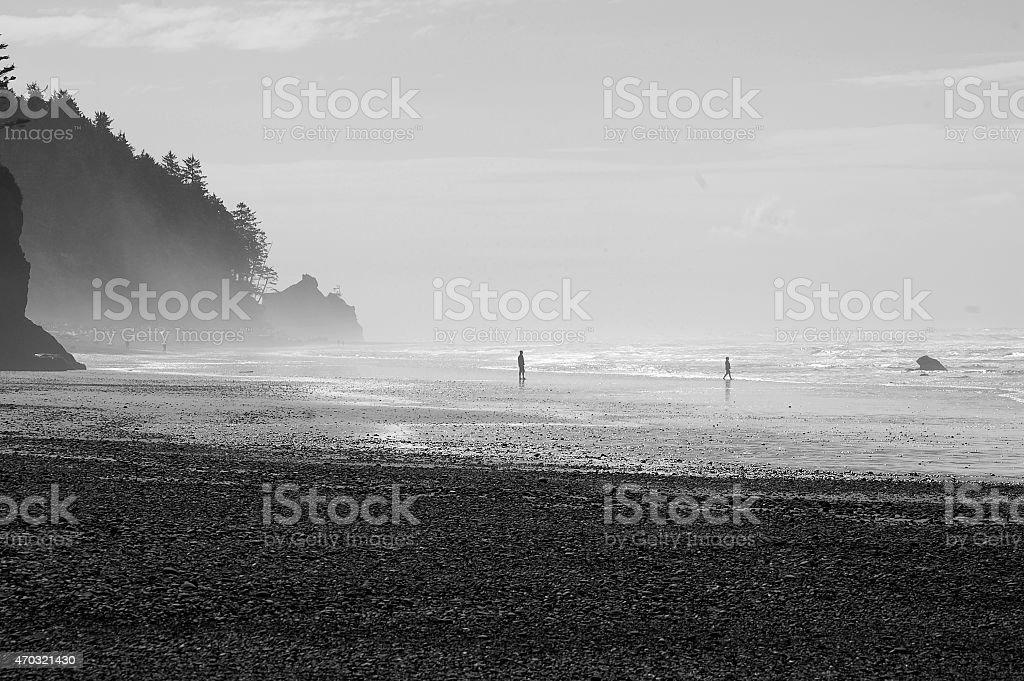 Ruby Beach, Washington stock photo
