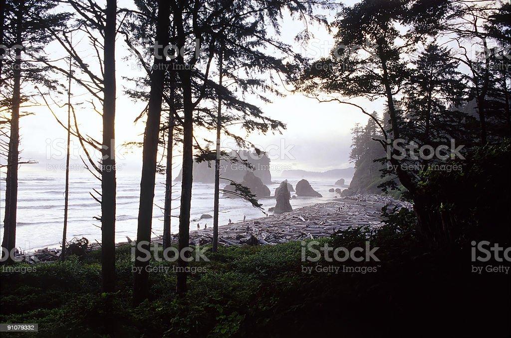 Ruby Beach, Washington, USA Horizontal View stock photo