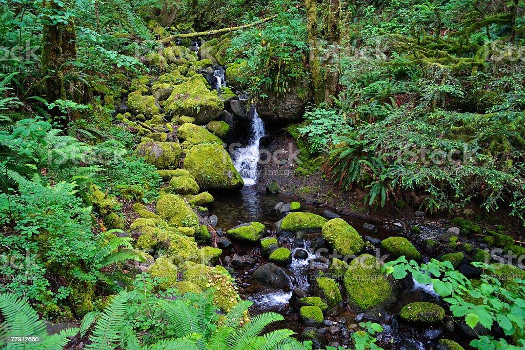Ruckel Creek Green Stones stock photo