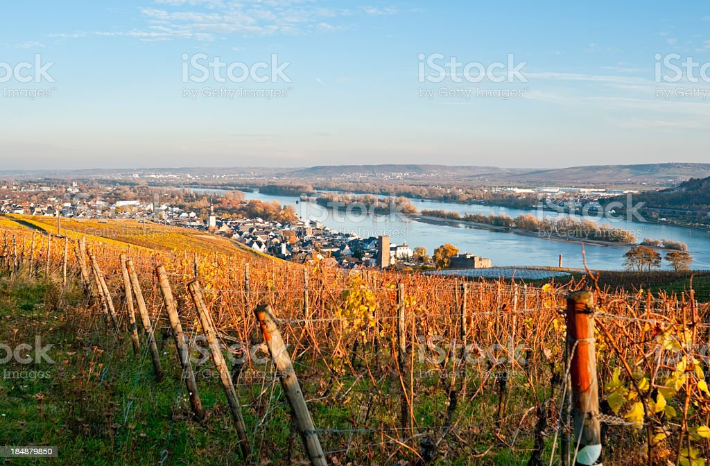 Rüdesheim in Deutschland – Foto
