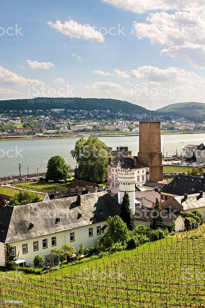 Ruedesheim in the Rheingau stock photo