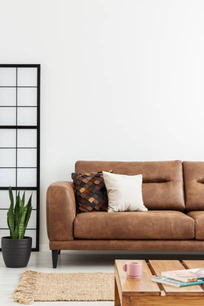 Rug and brown leather sofa with pillows in white flat interior with plant and wooden table. Real photo stock photo