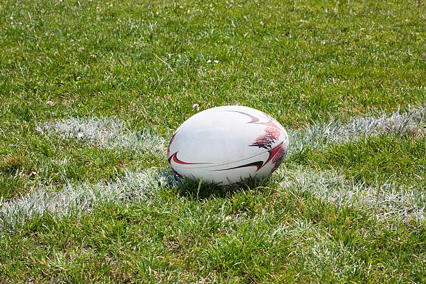 rugby ball lying on line - rugby ball stock photos and pictures